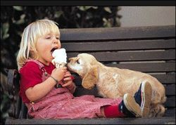 Share with puppy dog